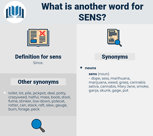 sens, synonym sens, another word for sens, words like sens, thesaurus sens