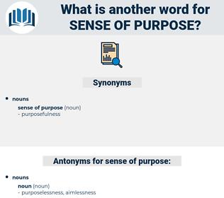 sense of purpose, synonym sense of purpose, another word for sense of purpose, words like sense of purpose, thesaurus sense of purpose