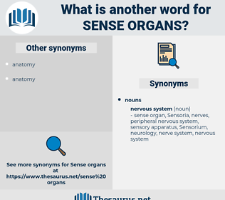 sense organs, synonym sense organs, another word for sense organs, words like sense organs, thesaurus sense organs
