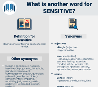 sensitive, synonym sensitive, another word for sensitive, words like sensitive, thesaurus sensitive