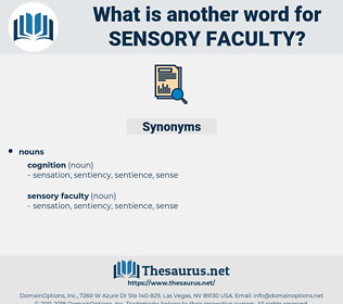sensory faculty, synonym sensory faculty, another word for sensory faculty, words like sensory faculty, thesaurus sensory faculty