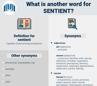 sentient, synonym sentient, another word for sentient, words like sentient, thesaurus sentient