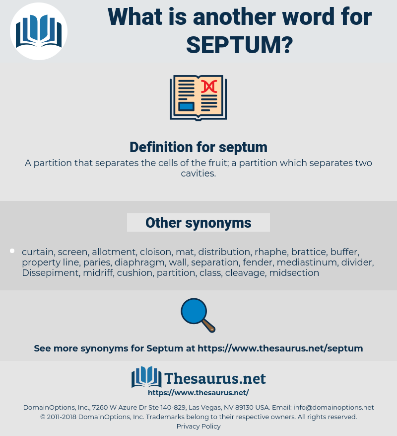 septum, synonym septum, another word for septum, words like septum, thesaurus septum