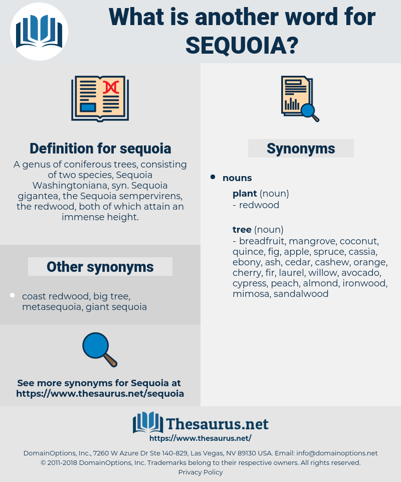 sequoia, synonym sequoia, another word for sequoia, words like sequoia, thesaurus sequoia