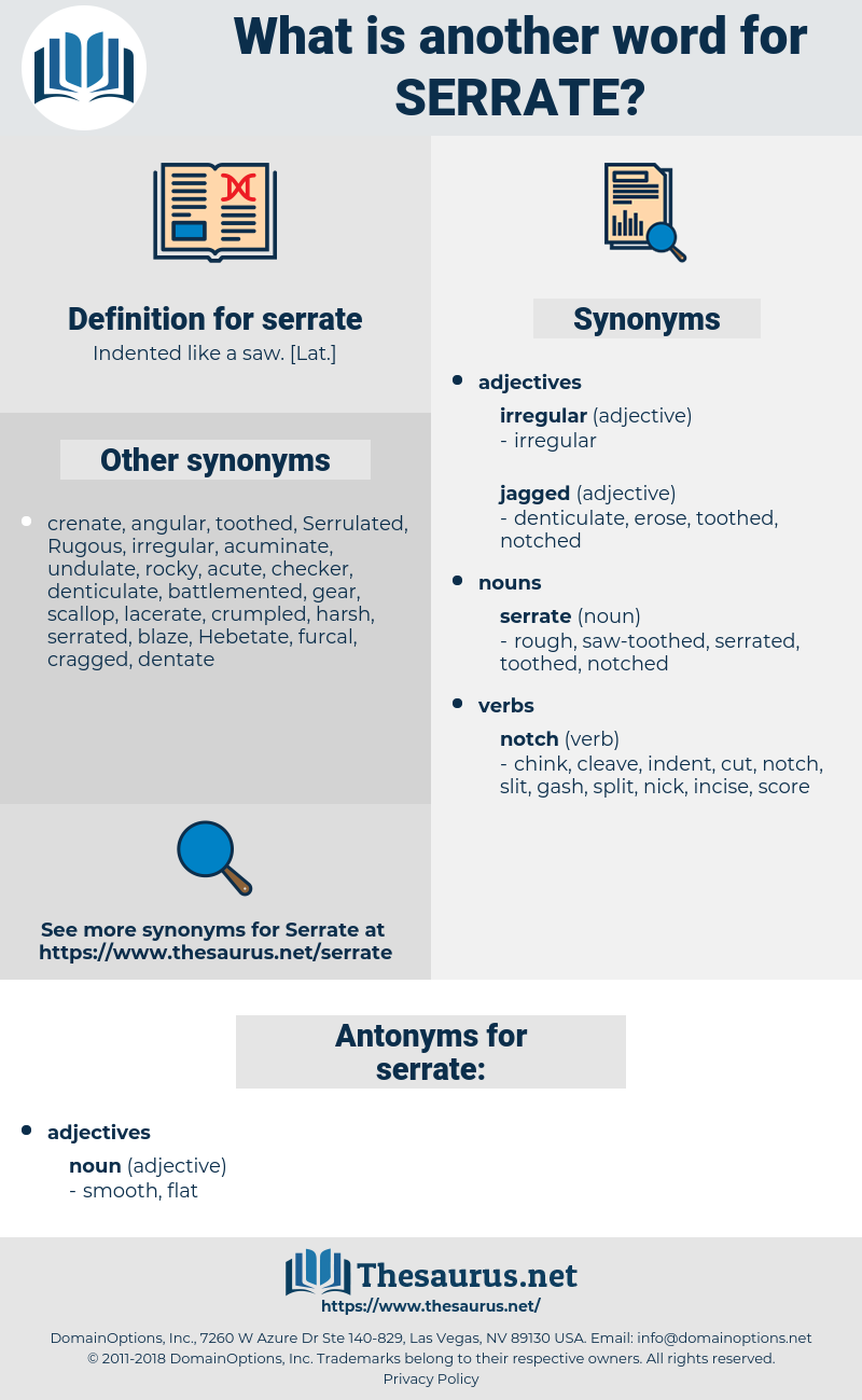 serrate, synonym serrate, another word for serrate, words like serrate, thesaurus serrate