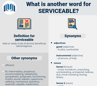 serviceable, synonym serviceable, another word for serviceable, words like serviceable, thesaurus serviceable