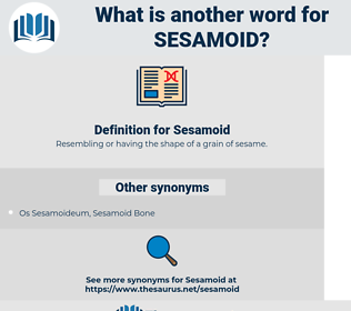 Sesamoid, synonym Sesamoid, another word for Sesamoid, words like Sesamoid, thesaurus Sesamoid