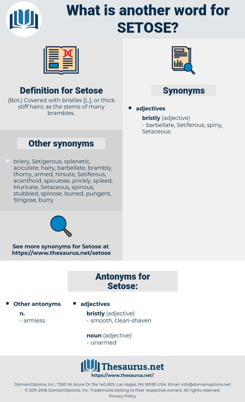 Setose, synonym Setose, another word for Setose, words like Setose, thesaurus Setose