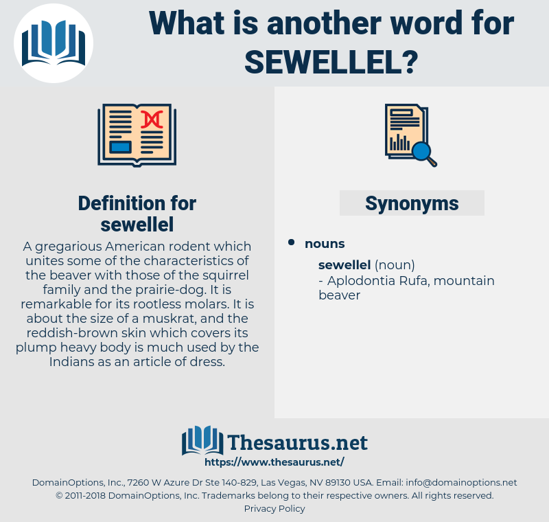 sewellel, synonym sewellel, another word for sewellel, words like sewellel, thesaurus sewellel