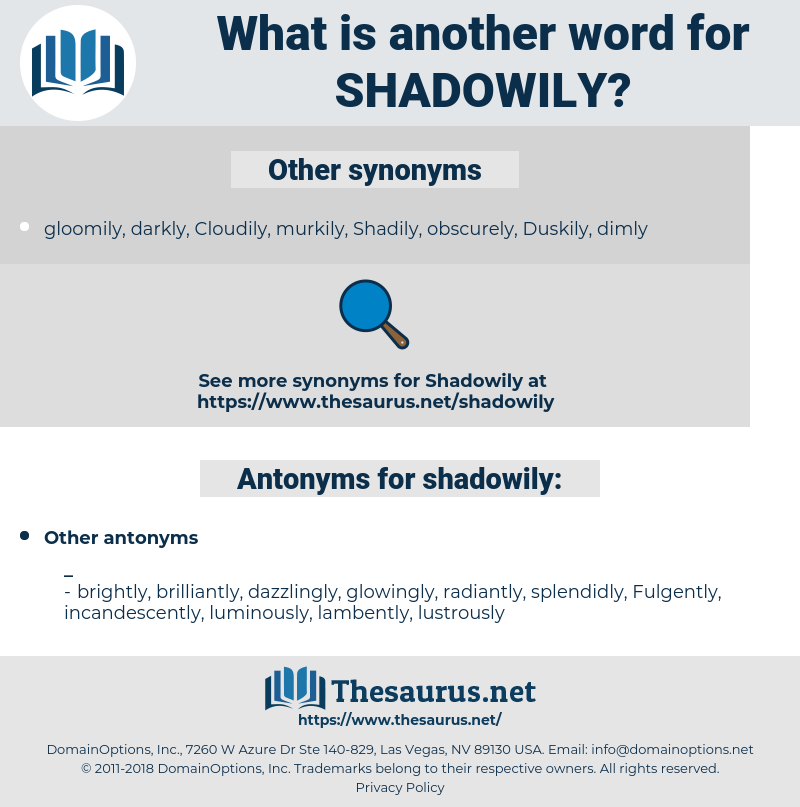 shadowily, synonym shadowily, another word for shadowily, words like shadowily, thesaurus shadowily