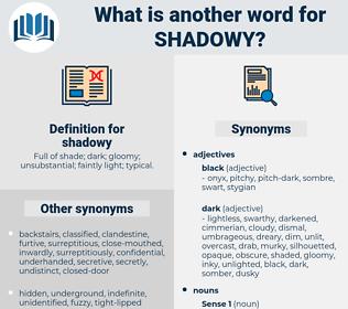 shadowy, synonym shadowy, another word for shadowy, words like shadowy, thesaurus shadowy