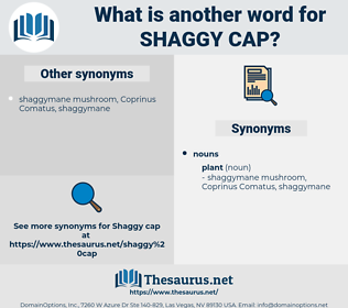 shaggy cap, synonym shaggy cap, another word for shaggy cap, words like shaggy cap, thesaurus shaggy cap