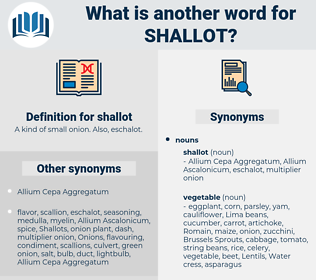 shallot, synonym shallot, another word for shallot, words like shallot, thesaurus shallot