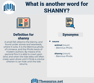 shanny, synonym shanny, another word for shanny, words like shanny, thesaurus shanny