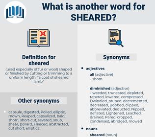 sheared, synonym sheared, another word for sheared, words like sheared, thesaurus sheared