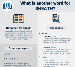 sheath, synonym sheath, another word for sheath, words like sheath, thesaurus sheath