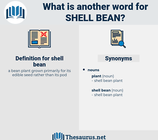 shell bean, synonym shell bean, another word for shell bean, words like shell bean, thesaurus shell bean