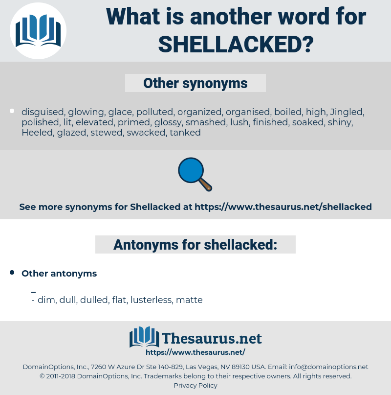 shellacked, synonym shellacked, another word for shellacked, words like shellacked, thesaurus shellacked