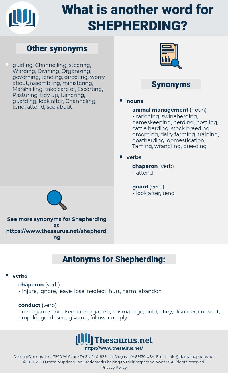 Shepherding, synonym Shepherding, another word for Shepherding, words like Shepherding, thesaurus Shepherding