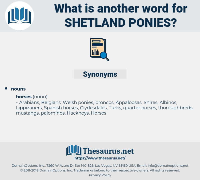 Shetland ponies, synonym Shetland ponies, another word for Shetland ponies, words like Shetland ponies, thesaurus Shetland ponies