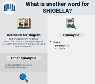shigella, synonym shigella, another word for shigella, words like shigella, thesaurus shigella