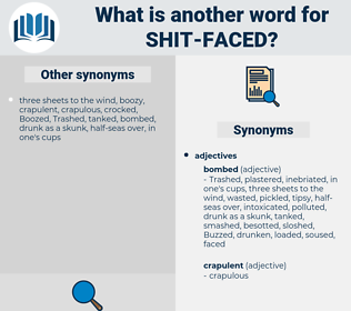 shit-faced, synonym shit-faced, another word for shit-faced, words like shit-faced, thesaurus shit-faced
