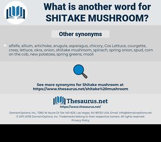 shitake mushroom, synonym shitake mushroom, another word for shitake mushroom, words like shitake mushroom, thesaurus shitake mushroom
