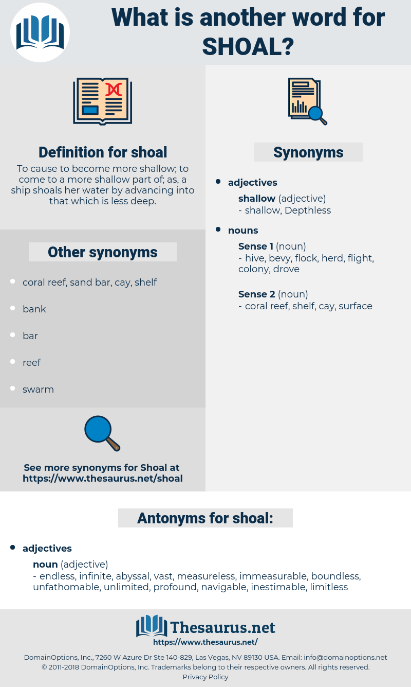 shoal, synonym shoal, another word for shoal, words like shoal, thesaurus shoal
