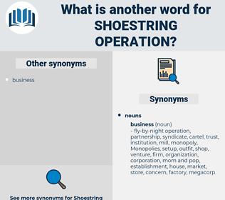 shoestring operation, synonym shoestring operation, another word for shoestring operation, words like shoestring operation, thesaurus shoestring operation