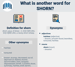 shorn, synonym shorn, another word for shorn, words like shorn, thesaurus shorn