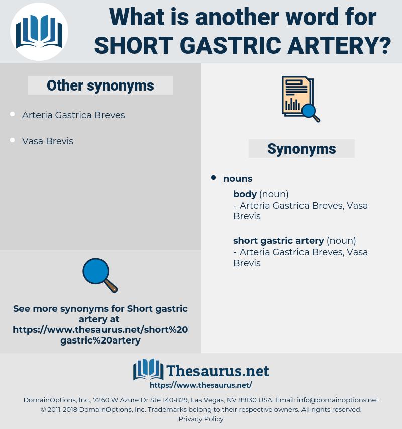 short gastric artery, synonym short gastric artery, another word for short gastric artery, words like short gastric artery, thesaurus short gastric artery