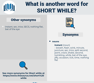 short while, synonym short while, another word for short while, words like short while, thesaurus short while