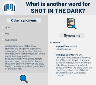 shot in the dark, synonym shot in the dark, another word for shot in the dark, words like shot in the dark, thesaurus shot in the dark