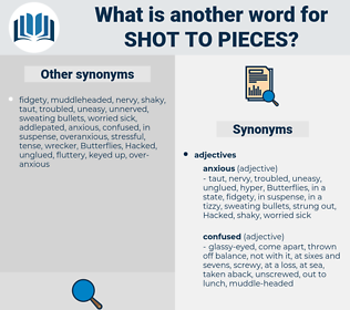 shot to pieces, synonym shot to pieces, another word for shot to pieces, words like shot to pieces, thesaurus shot to pieces