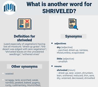 shriveled, synonym shriveled, another word for shriveled, words like shriveled, thesaurus shriveled