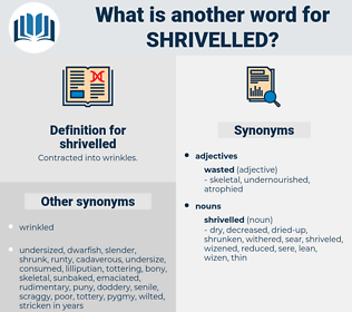 shrivelled, synonym shrivelled, another word for shrivelled, words like shrivelled, thesaurus shrivelled