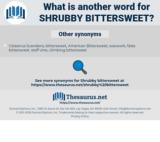 shrubby bittersweet, synonym shrubby bittersweet, another word for shrubby bittersweet, words like shrubby bittersweet, thesaurus shrubby bittersweet