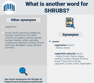 shrubs, synonym shrubs, another word for shrubs, words like shrubs, thesaurus shrubs