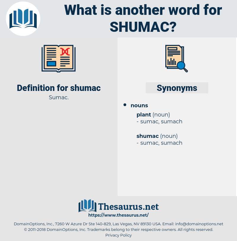 shumac, synonym shumac, another word for shumac, words like shumac, thesaurus shumac