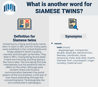 Siamese twins, synonym Siamese twins, another word for Siamese twins, words like Siamese twins, thesaurus Siamese twins