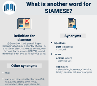 siamese, synonym siamese, another word for siamese, words like siamese, thesaurus siamese