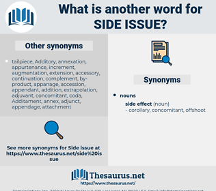 side issue, synonym side issue, another word for side issue, words like side issue, thesaurus side issue