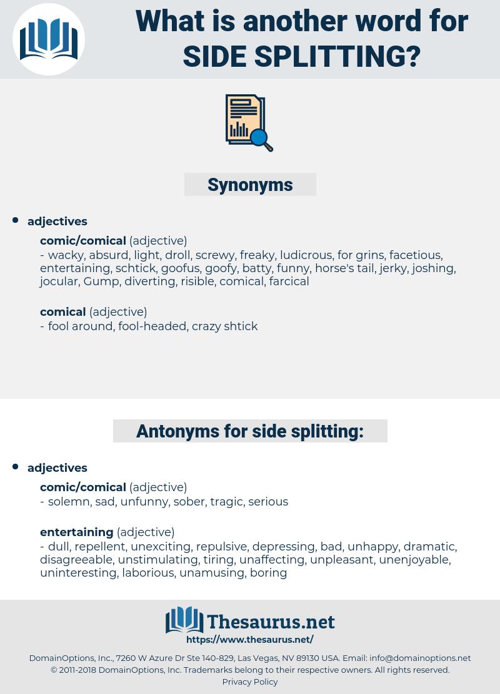 side splitting, synonym side splitting, another word for side splitting, words like side splitting, thesaurus side splitting