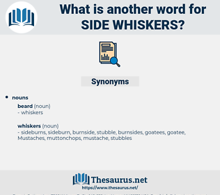 side whiskers, synonym side whiskers, another word for side whiskers, words like side whiskers, thesaurus side whiskers