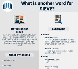 sieve, synonym sieve, another word for sieve, words like sieve, thesaurus sieve