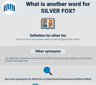 silver fox, synonym silver fox, another word for silver fox, words like silver fox, thesaurus silver fox