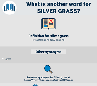 silver grass, synonym silver grass, another word for silver grass, words like silver grass, thesaurus silver grass