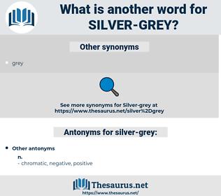 silver grey, synonym silver grey, another word for silver grey, words like silver grey, thesaurus silver grey