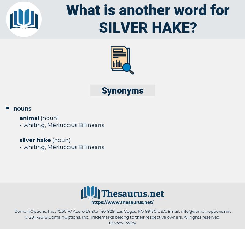 silver hake, synonym silver hake, another word for silver hake, words like silver hake, thesaurus silver hake