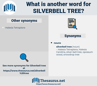 Silverbell Tree, synonym Silverbell Tree, another word for Silverbell Tree, words like Silverbell Tree, thesaurus Silverbell Tree